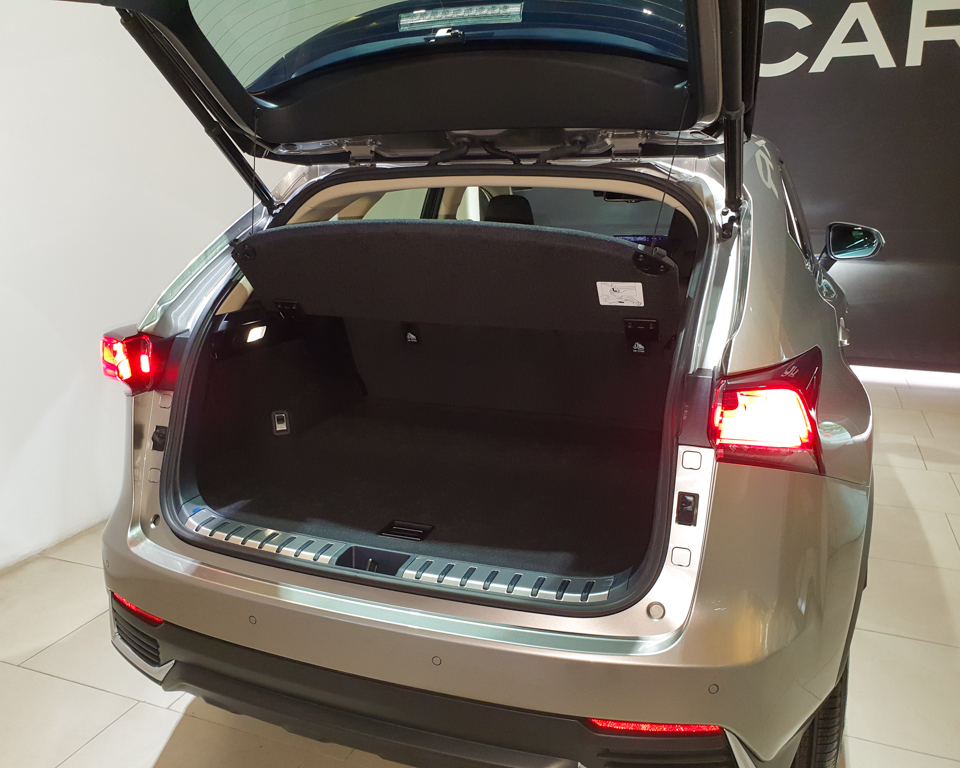 Lexus NX Hybrid NX300h Luxury - Boot Trunk