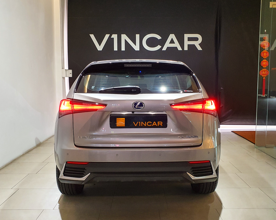 Lexus NX Hybrid NX300h Luxury - Rear Direct