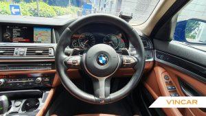 2016 BMW 5 Series 520i - Steering Wheel